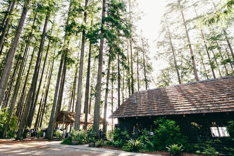 kitsap-state-park-wedding-0085.jpg