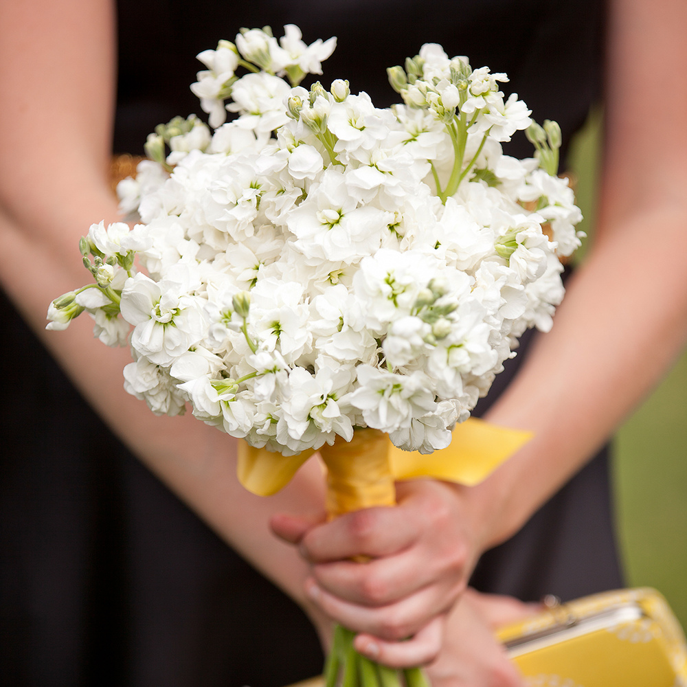 LaceHanky_Flowers_TBT015.jpg