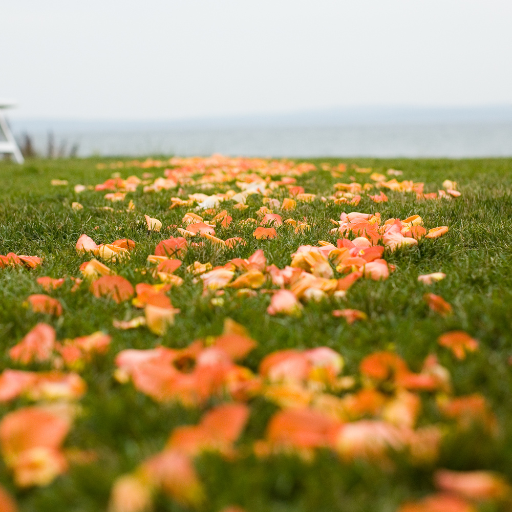 LaceHanky_Flowers_TBT027.jpg