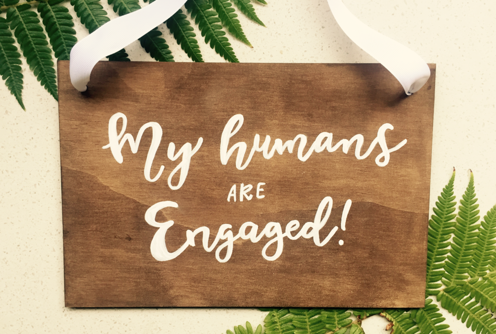 My Humans are Engaged