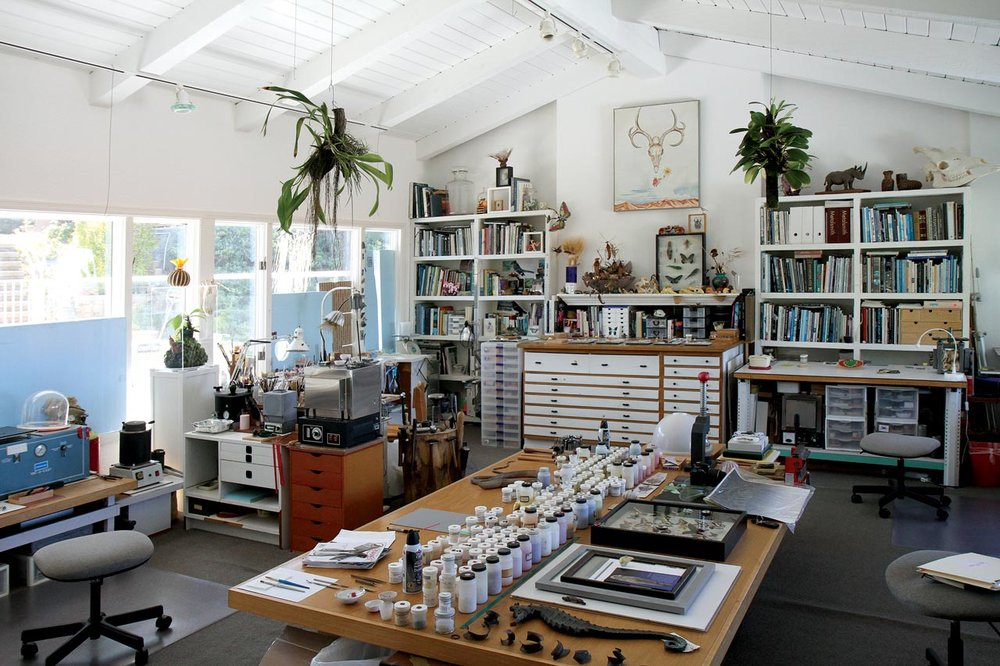 DAVID FREDA AND TRISH MCALEER'S SECOND FLOOR STUDIO, wonderfully flooded by light, partially blocked by removable blue window panels. Visible are enamel powder vials on tabletop (each with fired samples on lids), kilns, vacuum caster, metal melter, wax injector and metalworking tools, as well as biological study specimens and live plants, mostly orchids. Cabinets hold projects in progress. Photographs by Robert K. Liu/Ornament Magazine, except where noted.