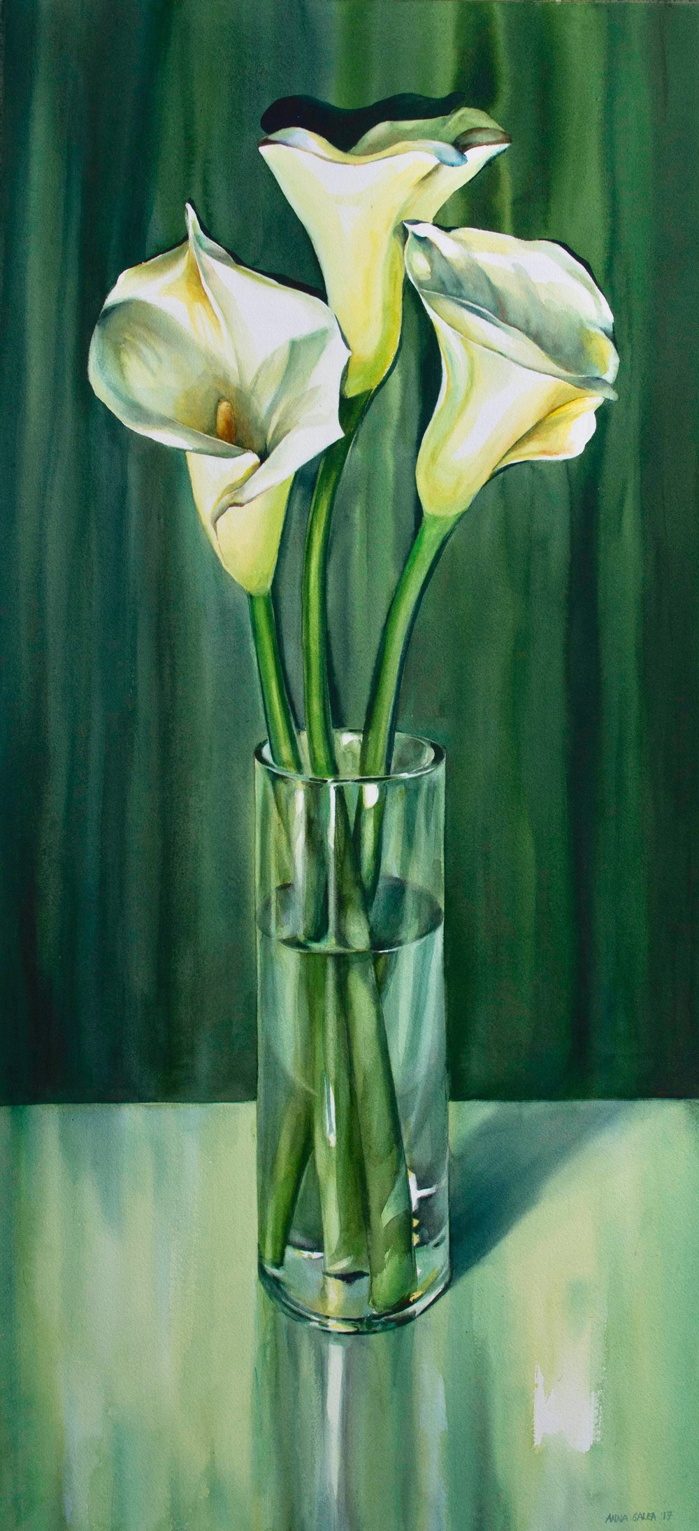 Three Lilies, 2017, Watercolour, 47x21 inches