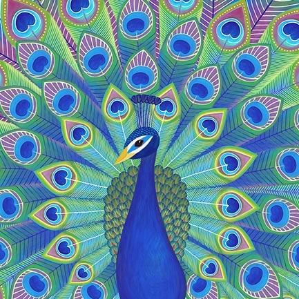 HM_16077_Peacock.jpg