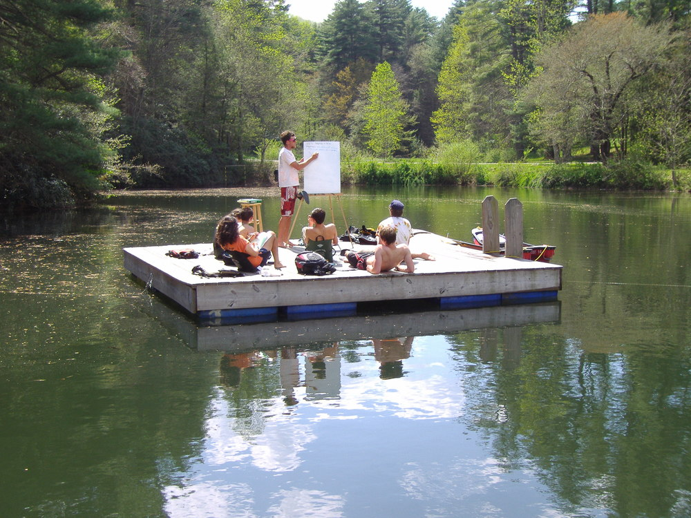 Functions and fractions on the floating dock