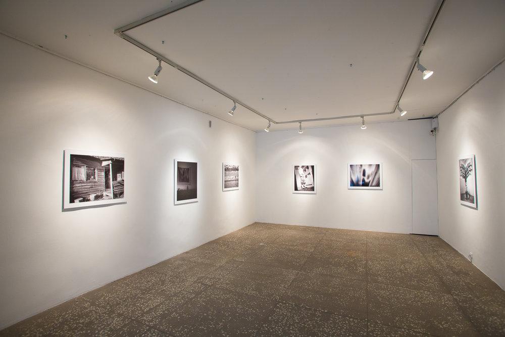 Tallinn City Gallery, 2015