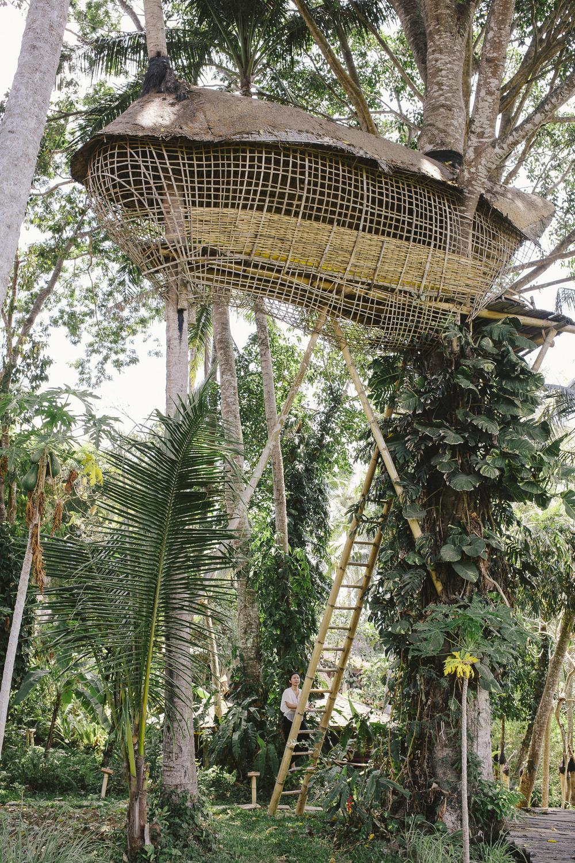 Bambu Indah, Bali. 2015.