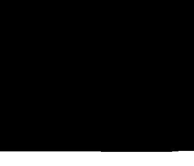 blackiris-logo.png