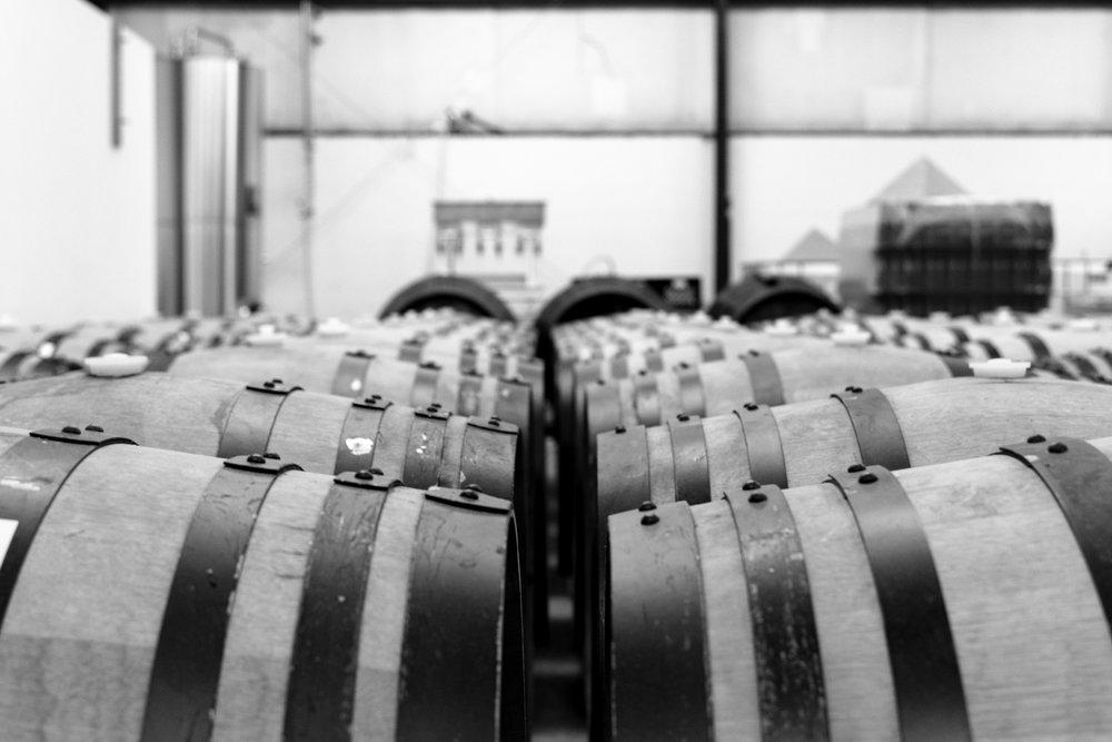 barrels BW.jpg