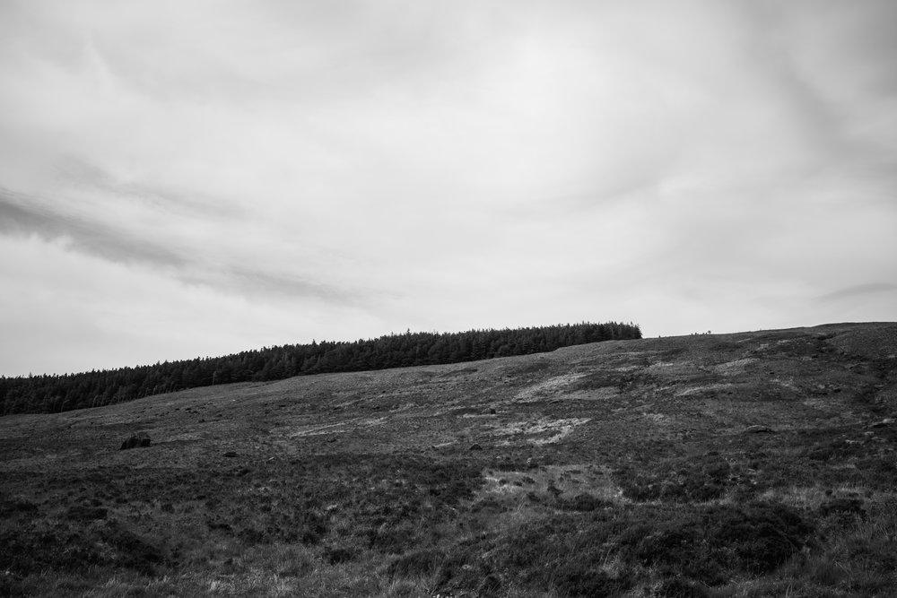 highlands 26.jpg