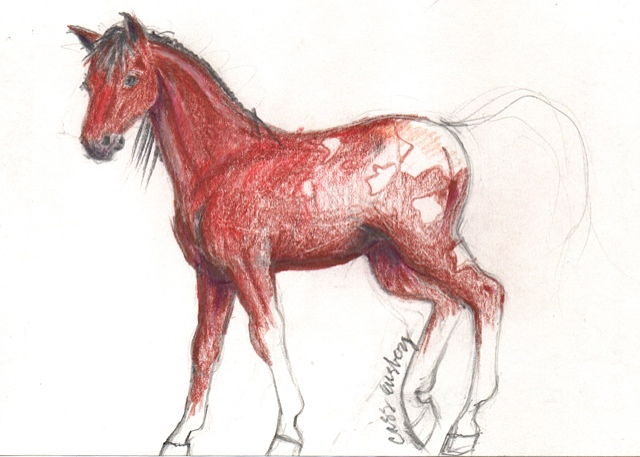 Red Horse Sketch (  6x5)