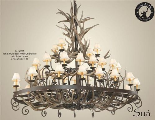 mule_deer_antlers_wrough_iron_chandelier.jpg