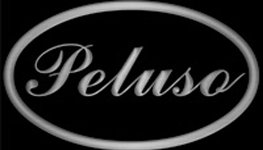 Peluso Microphone Labs builds outstanding studio recording microphones. Check out their lineup -  www.pelusomicrophonelab.com