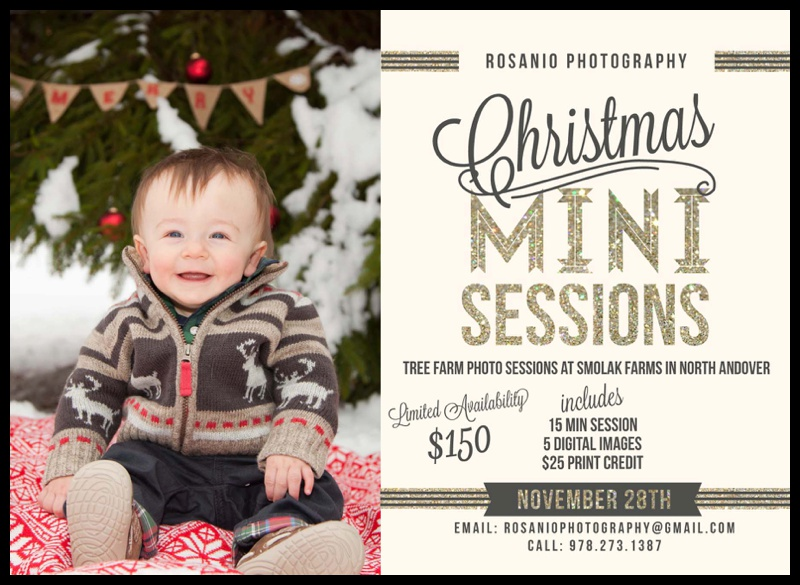Rosanio Photograhy | Massachusetts Family Photographer