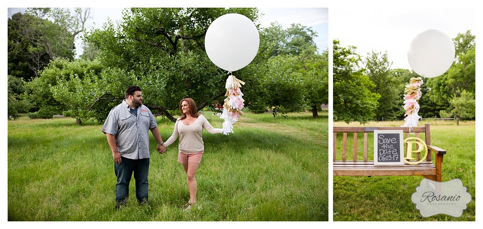 Rosanio Photography | Massachusetts Engagement Photographer | Stevens-Coolidge Place Engagement Session_0005.jpg