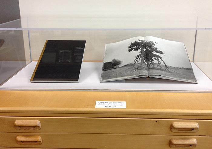 displaycase1.jpg