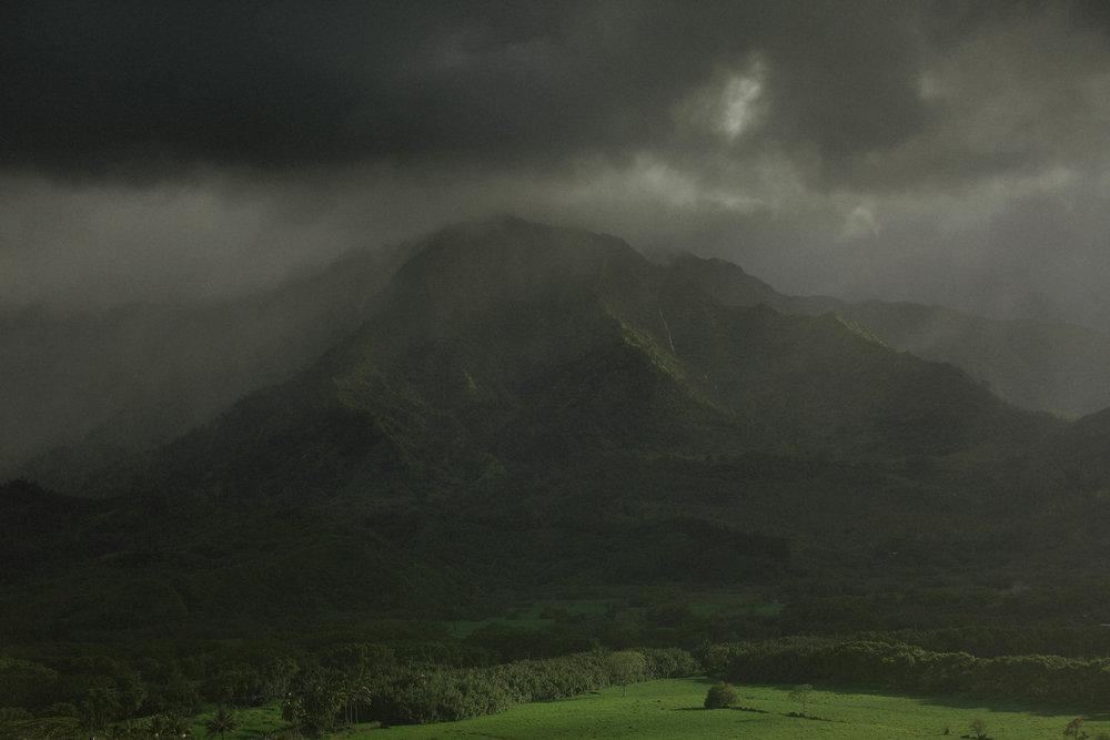 Kauai LR 2-31Kauai LR 2 Grain.jpg