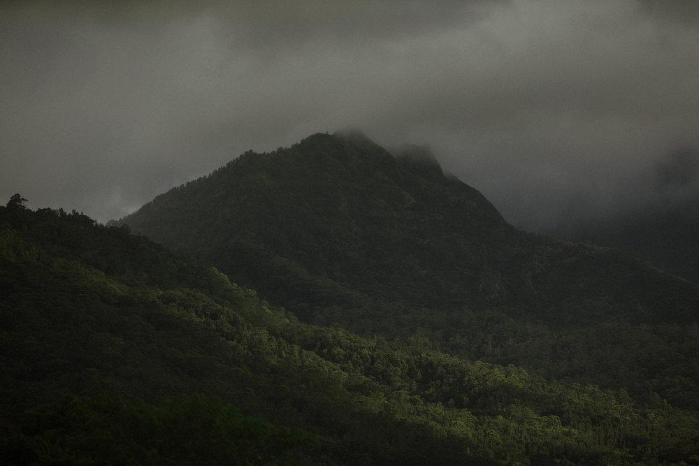 Kauai LR 2-10Kauai LR 2 Grain.jpg