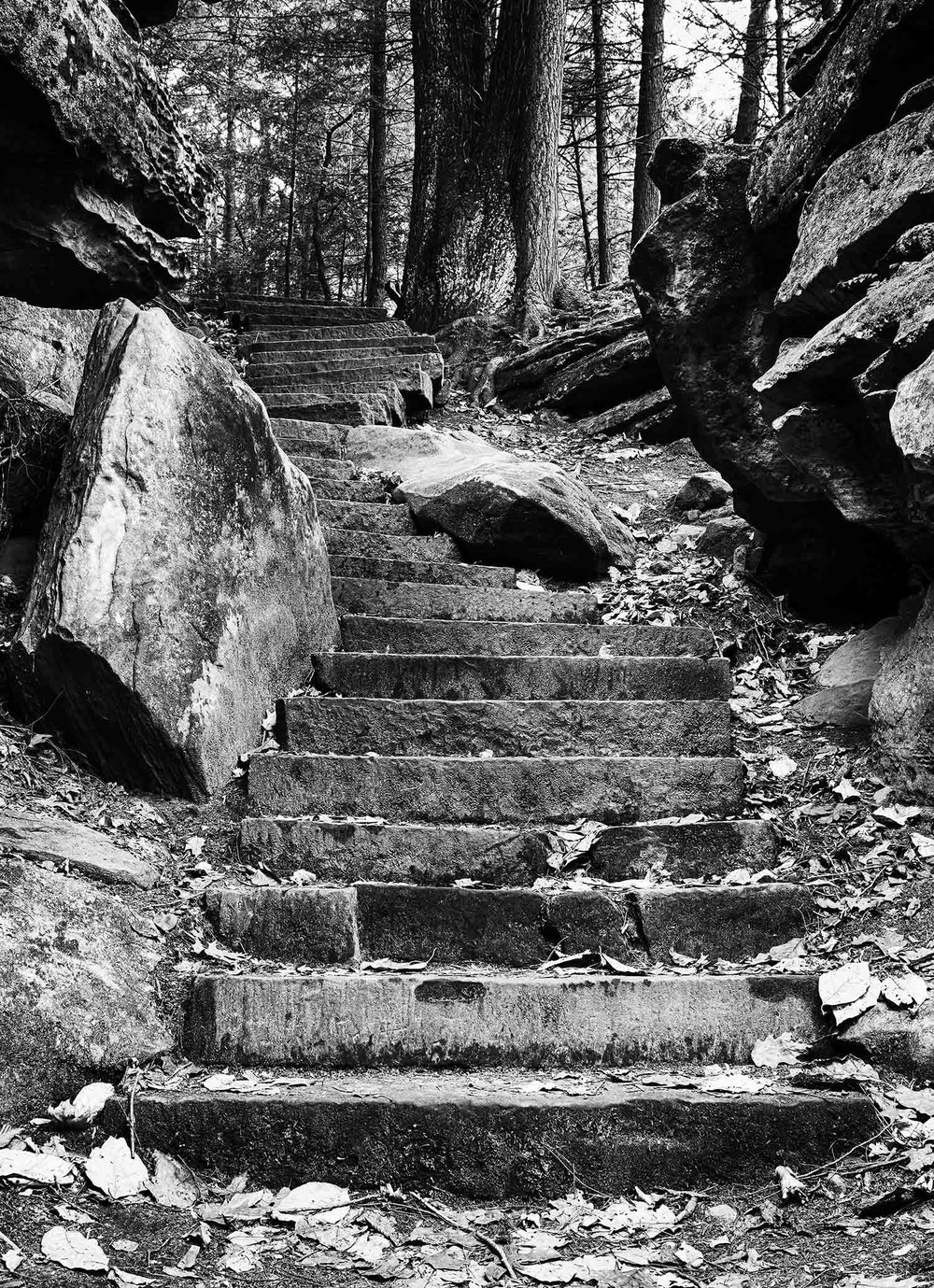 Trail Stairs - Virginia Kendall Ledges, Cuyahoga Valley National Park