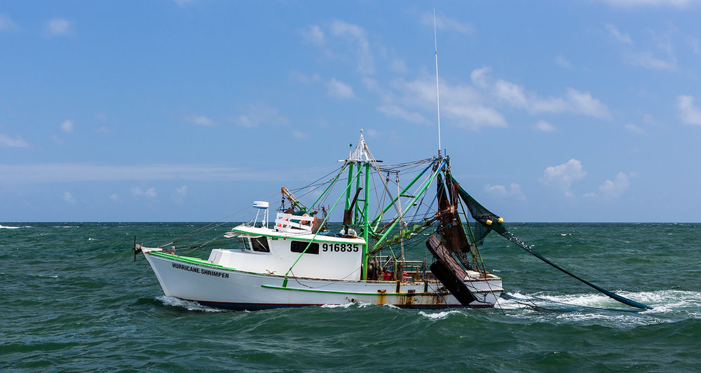 Shrimp boat we had pulled behind to observe the dolphins.