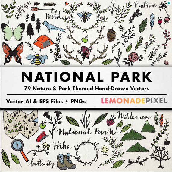 National Park Vector Art
