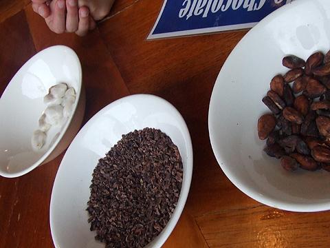 Mindo Chocolate Tour: beans