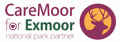 CareMoor Partner DSD.jpg
