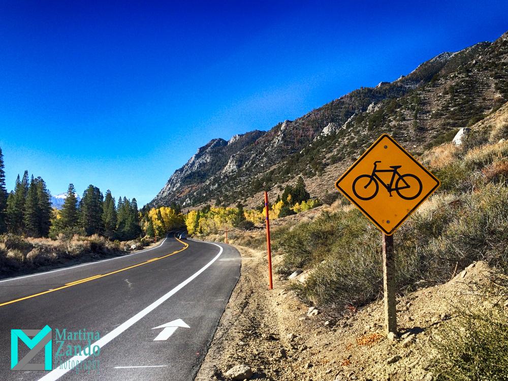 Martina_Zando_Photography_Climbing_Las_Vegas_LV-21.jpg