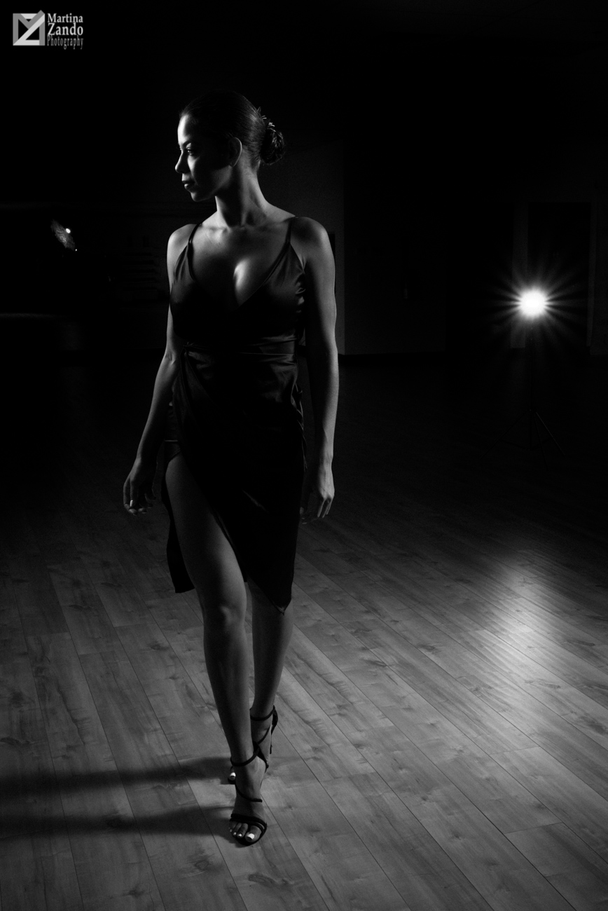 black and white silhouette of beautiful dancer