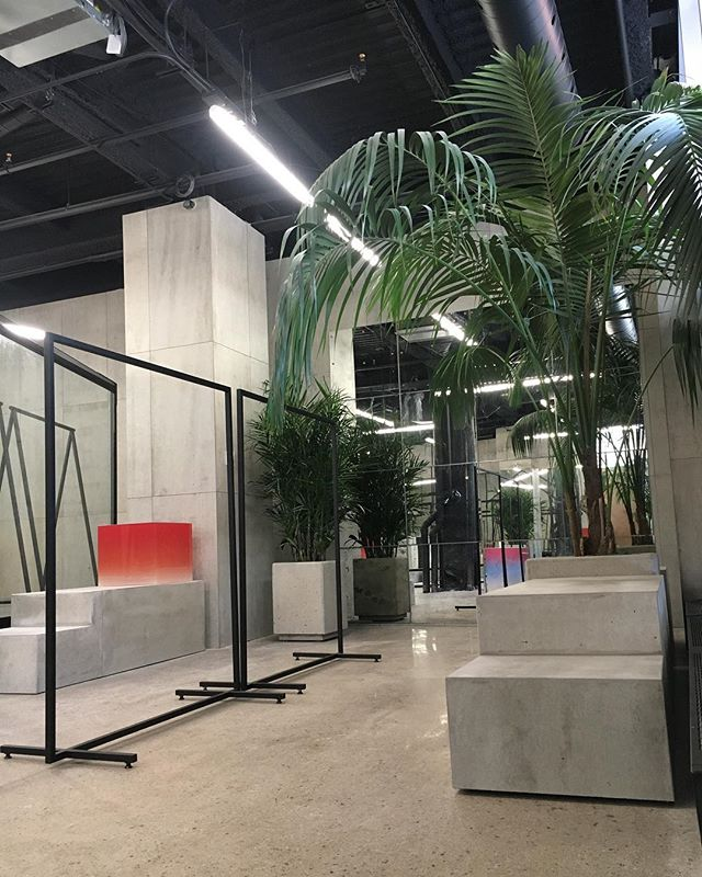 Opening soon.  Our surrealist tropical bunker for @cntrbndofficial #retaildesign #yorkville @greynorth #toronto #lostworld #brutalist #modern