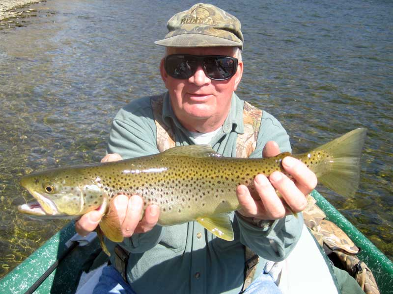 Beautiful Brown Trout on the Delaware River