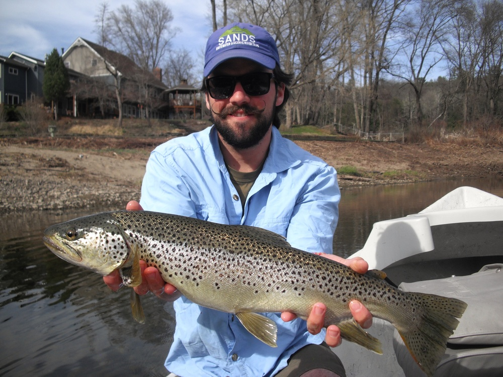 "23"" Brown Trout on the Delaware River, colorful trout with Sweetwater Guide Service"