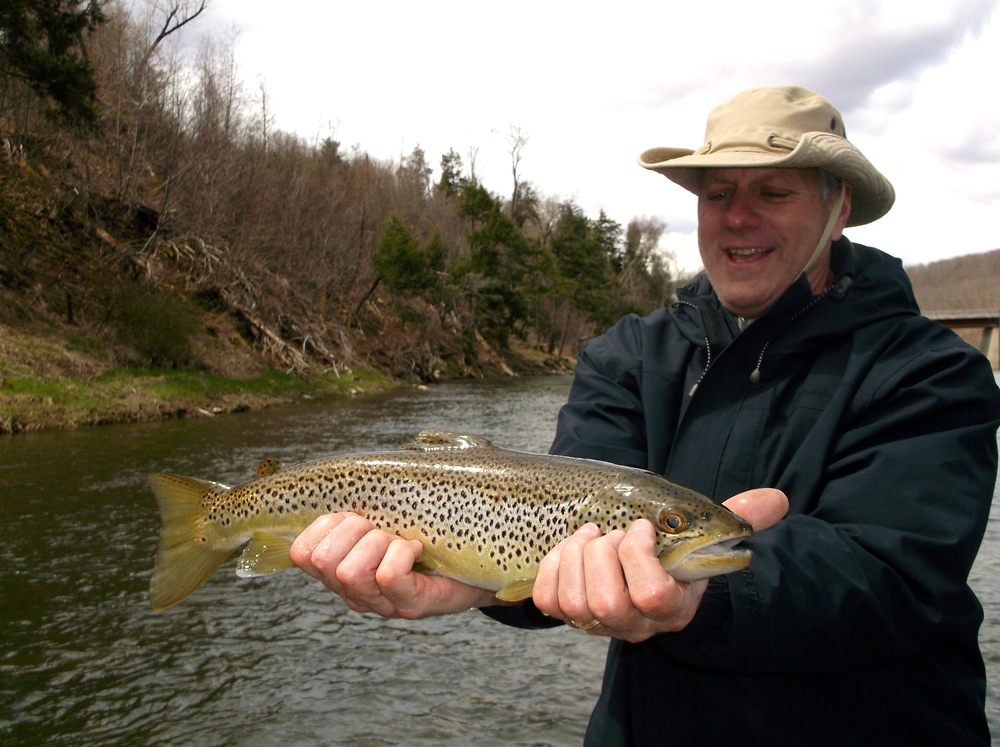 fly fishing for Brown trout on the Delaware river with Sweetwater Guide Service