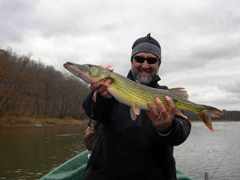 "27"" Chain Pickerel for Guide Mike P."