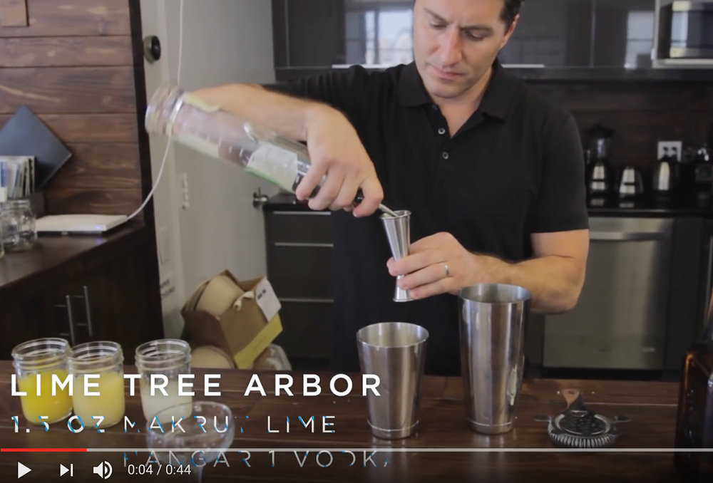 August 2016  LIME TREE ARBOR for wine awesomeness