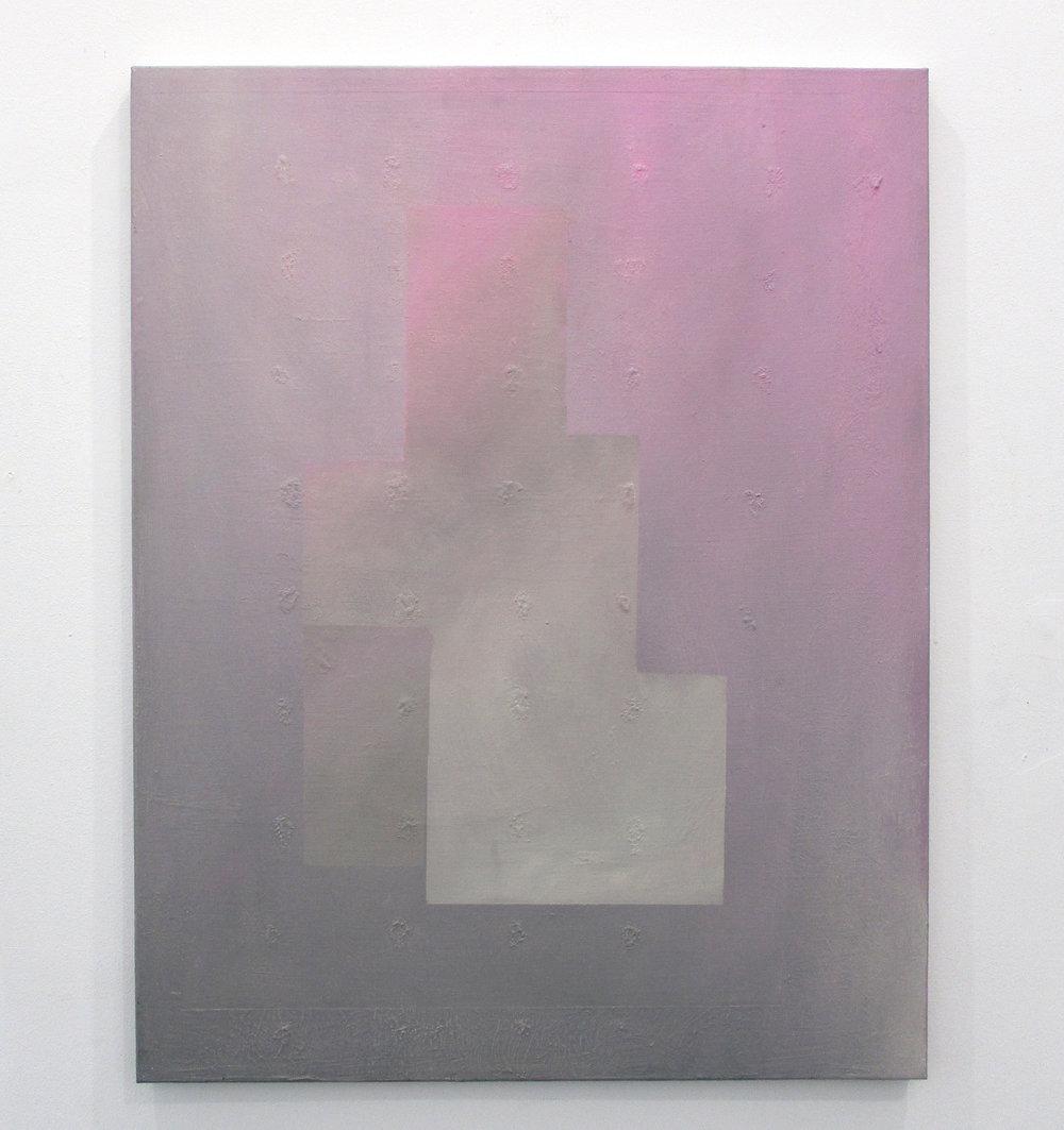 shape (pink). 2017