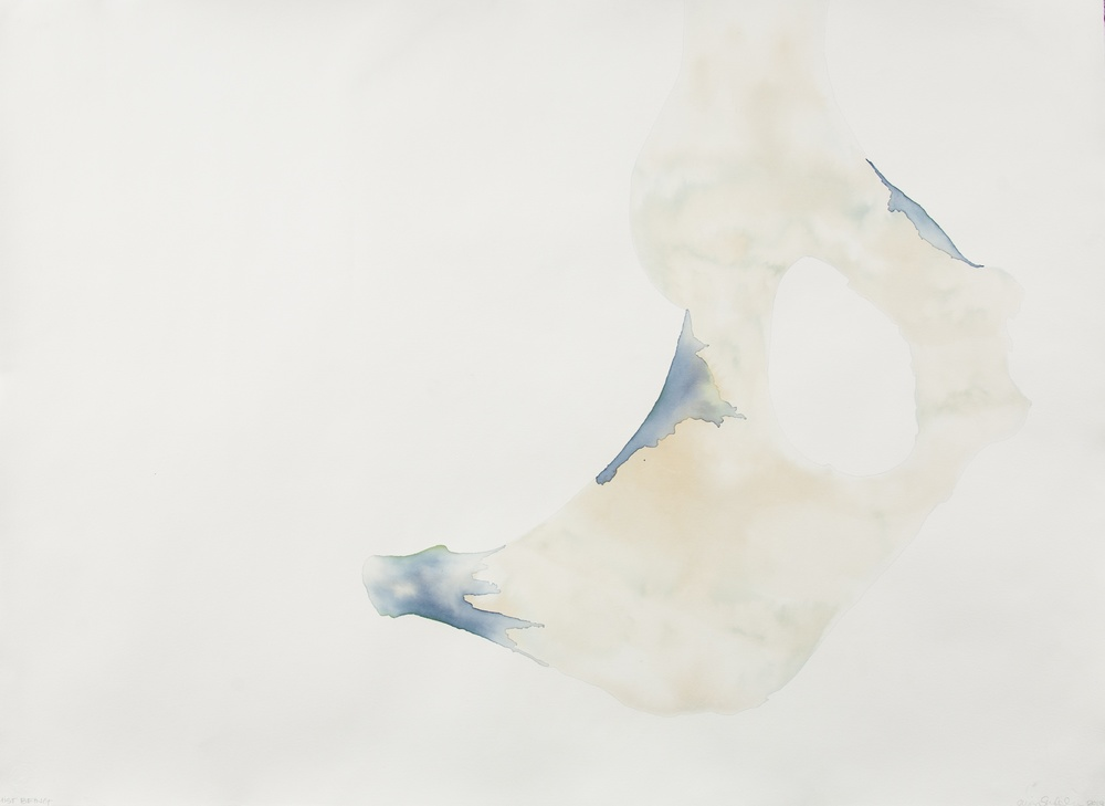 "ICELAND: EXPOSURE SIX   Cyanotype, Hahnemühle Paper   42"" x 31""   2013"