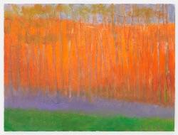 purplegroundfogwk.jpg