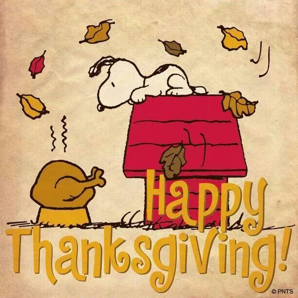 f69215c098f5a2e26ab7915385e14bbd--peanuts-thanksgiving-happy-thanksgiving.jpg
