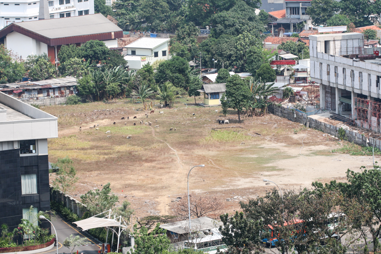 From the hotel room, we could see a field with livestock. Very peculiar for the center area of a major city!