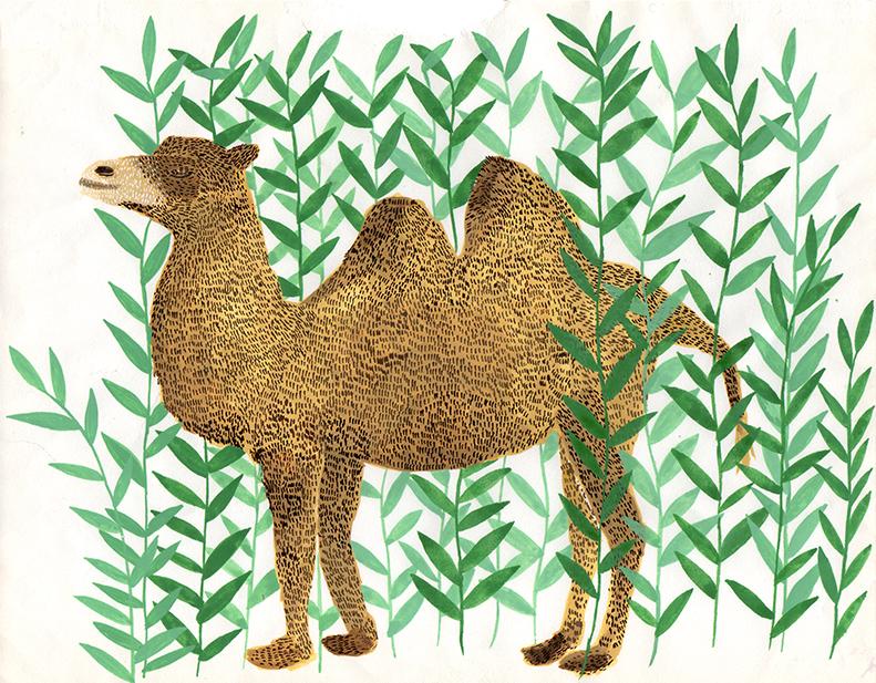 camel-for-e-magazine-.jpg