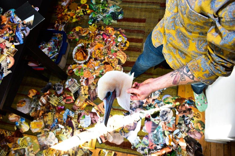 Overconfident Underachiever Collage Artist Chicago