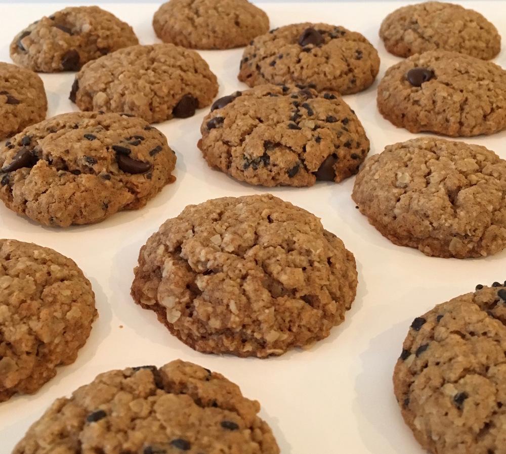 oatmeal cookie rows.jpg