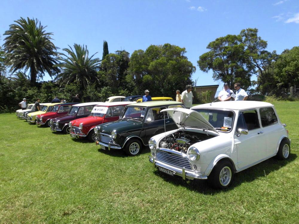 Image courtesy of  www.minisinthegong.com.au