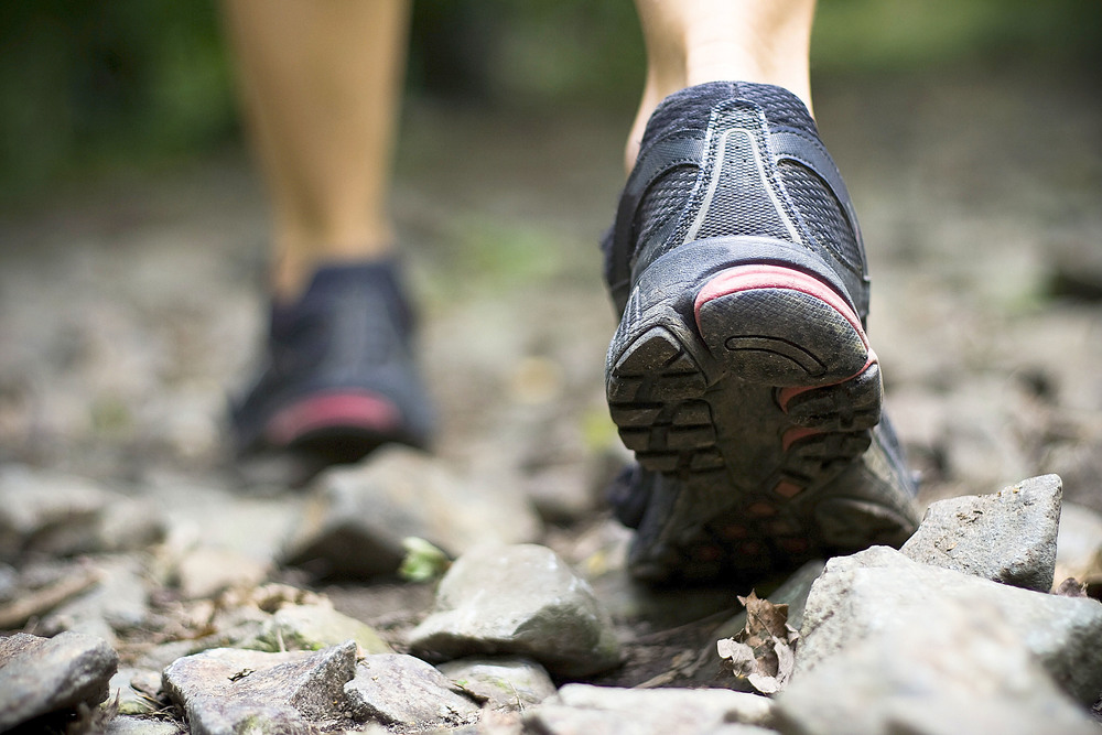 Trails + Hiking -