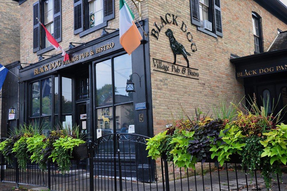 Black Dog Pub.jpg