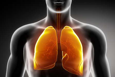 • The Lung Lab (formal laboratory based diagnostic services for respiratory related diseases) Testing will be conducted by our respiratory scientist Jane Fusi every Tuesday of the week. The test will include formal diagnosis of asthma, COPD, gas exchange, lung volumes and respiratory muscle strength testing for musculoskeletal and neurological diseases. The test will be $20.