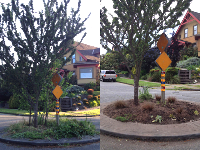 Before & after photos of the traffic circle, in case you were curious. :)