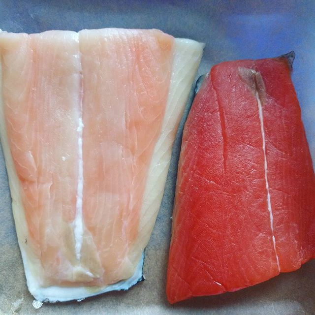 White and red king salmon. Apparently they're actually the same type of fish, but the white lacks an enzyme to make the red pigment. #youlearnsomethingneweveryday #beautifulfood #yummyyummyinmytummy