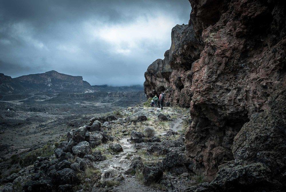 D3-27-Kilimanjaro-climbers-heading-to-Moir-Hut-Camp-05.jpg