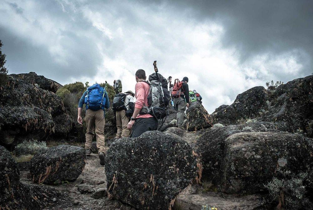 D3-24-Kilimanjaro-climbers-heading-to-Moir-Hut-Camp-02.jpg